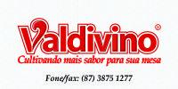 Valdivino